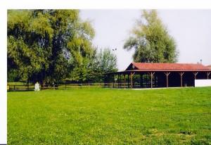 parco gorghi (1)